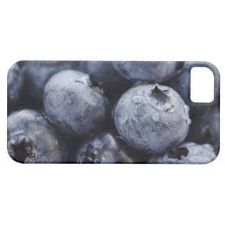 Studio tiré des myrtilles 3 coques iPhone 5 Case-Mate