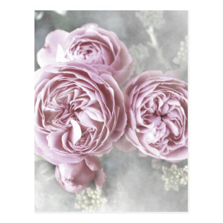 Style minable de roses créé par Tutti Carte Postale