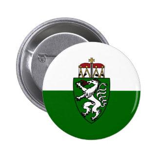 Styrie (état), drapeau de l'Autriche Pin's