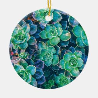 Succulents, Succulent, cactus, cactus, vert, Ornement Rond En Céramique