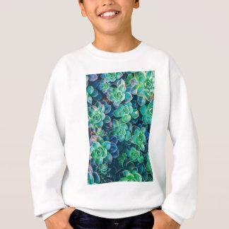 Succulents, Succulent, cactus, cactus, vert, Sweatshirt