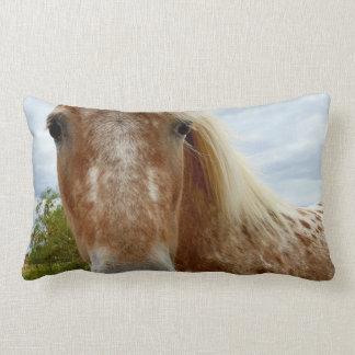 Sucrez le cheval d'Appaloosa, coussin lombaire