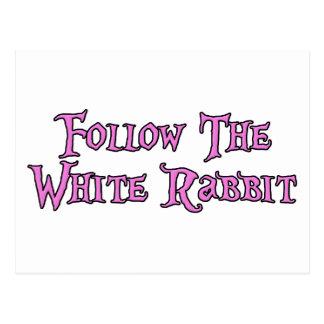 Suivez le lapin blanc carte postale
