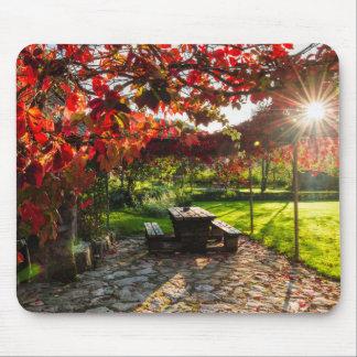 Sun par le feuille d'automne, Croatie Tapis De Souris