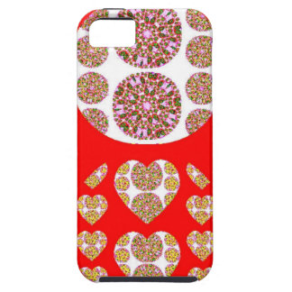 Sundecor Coque iPhone 5
