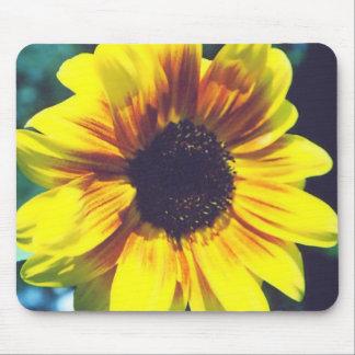 sunflower3 tapis de souris