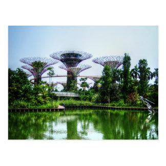 Supertrees et lac de libellule carte postale