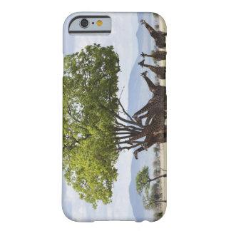 Sur le safari en parc national de Mikumi en Coque Barely There iPhone 6