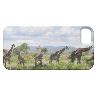 Sur le safari en parc national de Mikumi en Coque Case-Mate iPhone 5