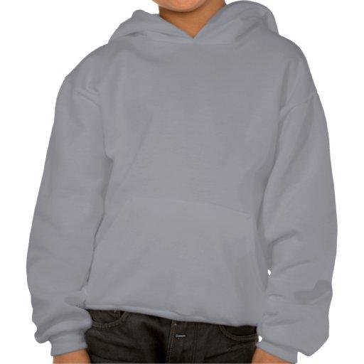 Surf Kauai Sweatshirts Avec Capuche