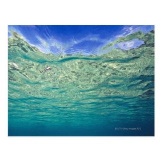 Surface de la mer actuelle claire vue de carte postale