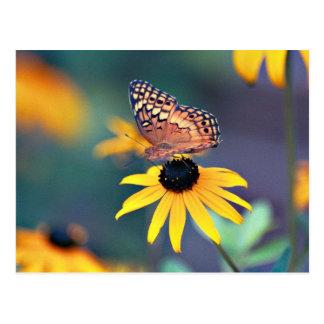 susan noir-eyed avec le papillon 2 carte postale
