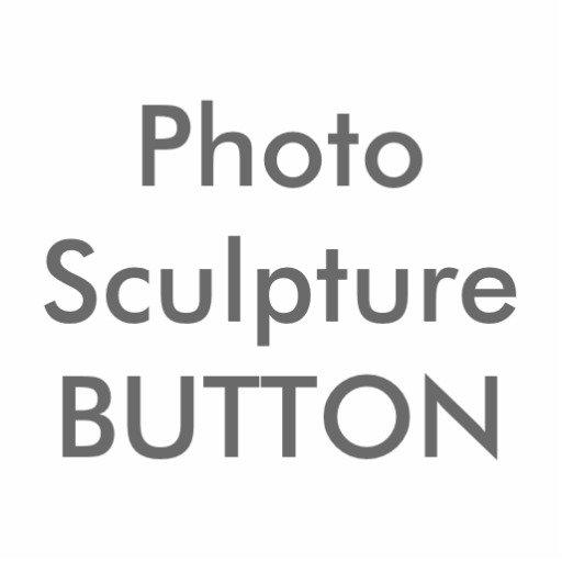 PHOTO SCULPTURE PINS