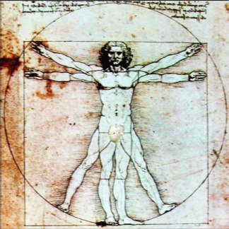 LEONARDO DA VINCI DRAWINGS AND SCIENCE