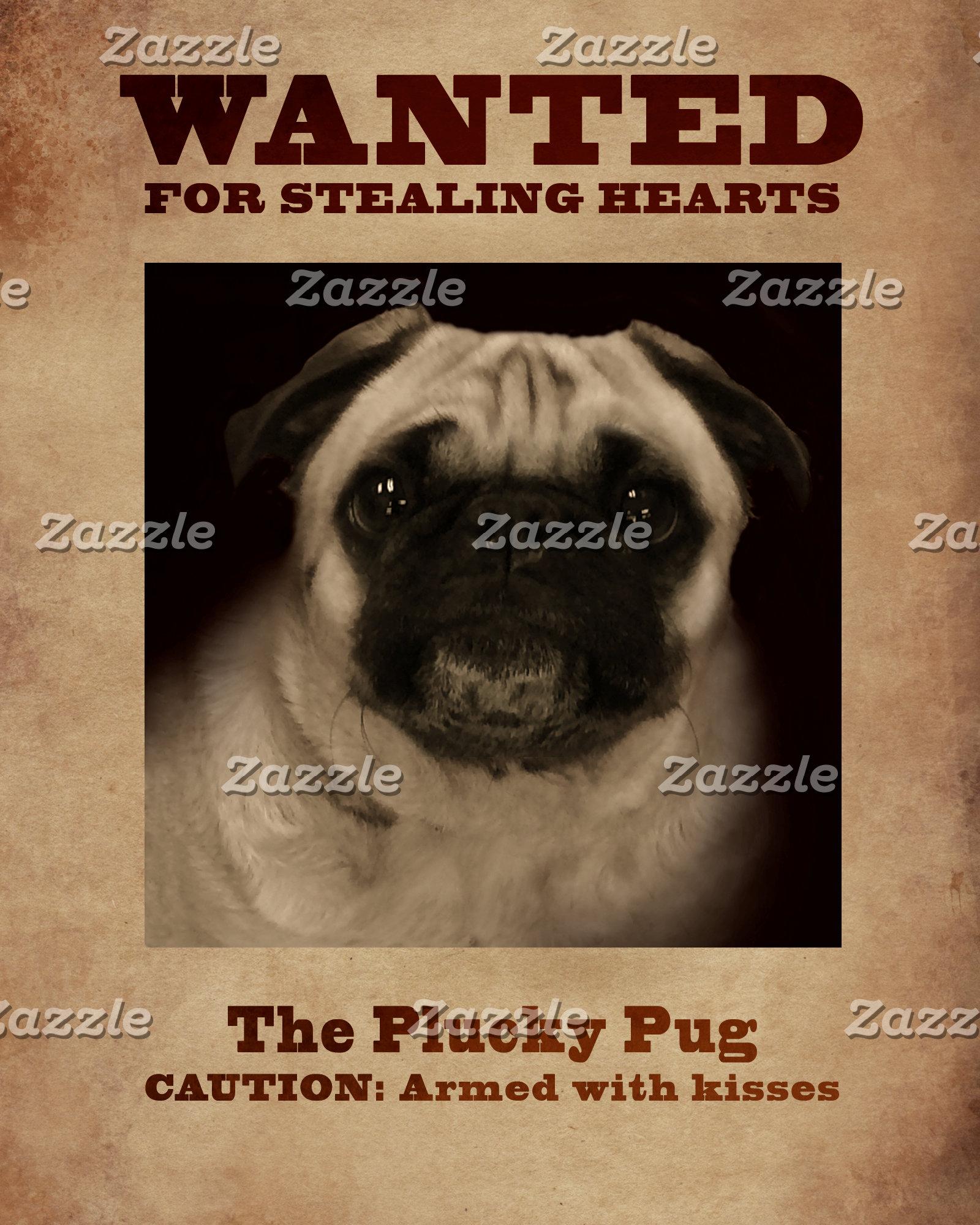 The Plucky Pug