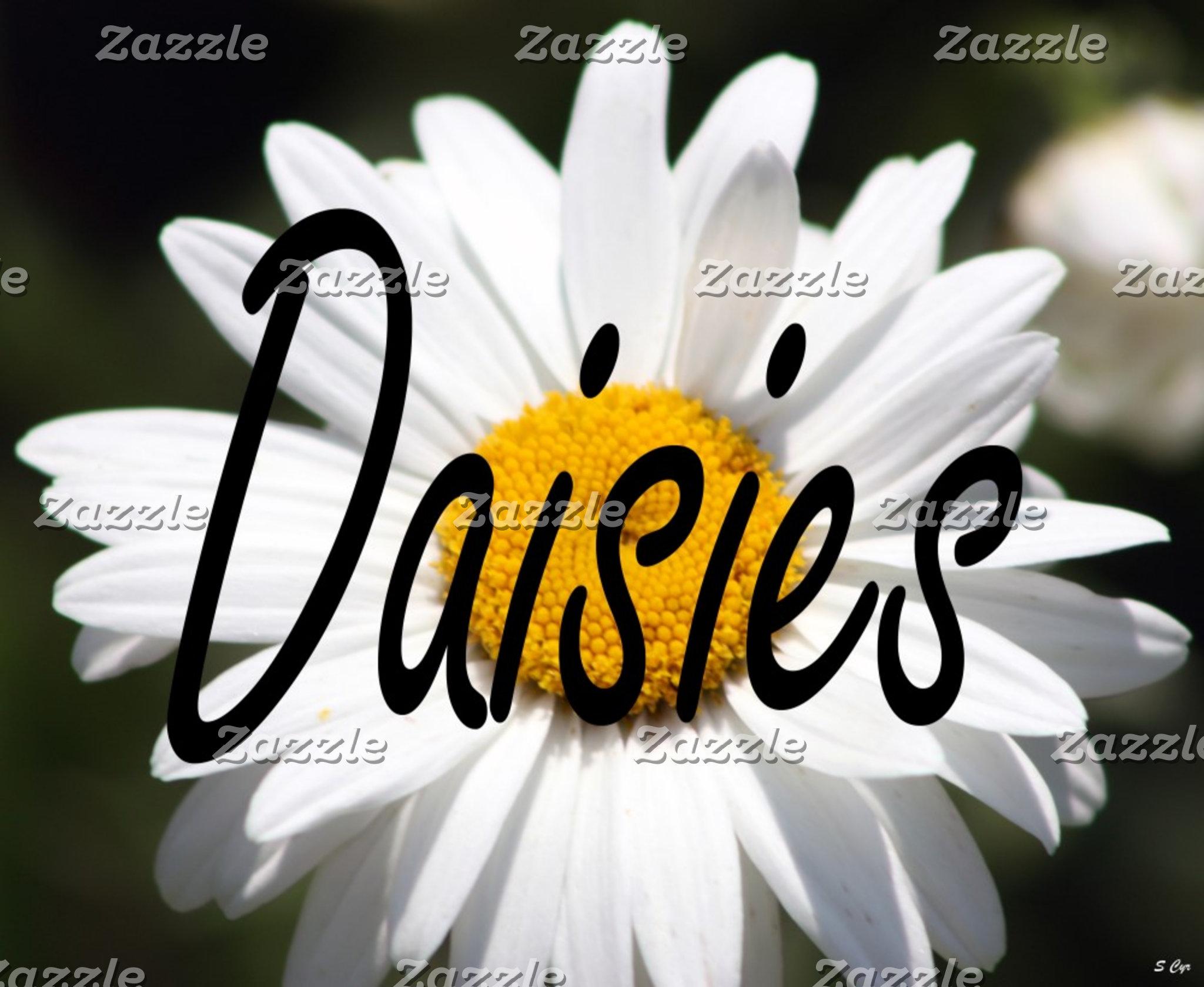 Daisies