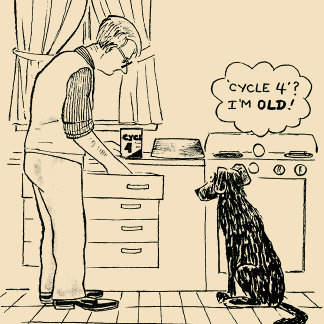 Saturday Evening Post Cartoons