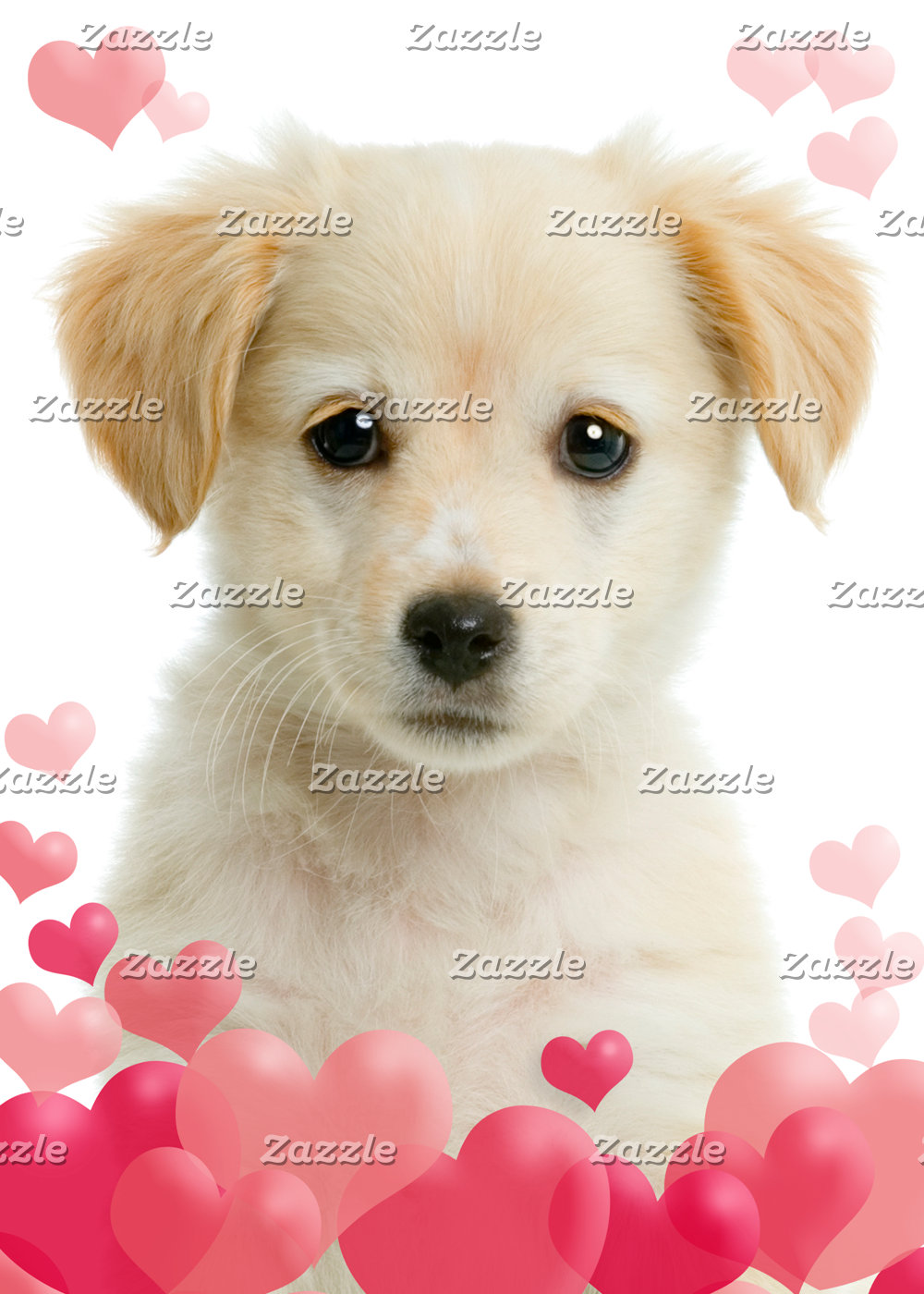 Puppy Love Cards and Gifts