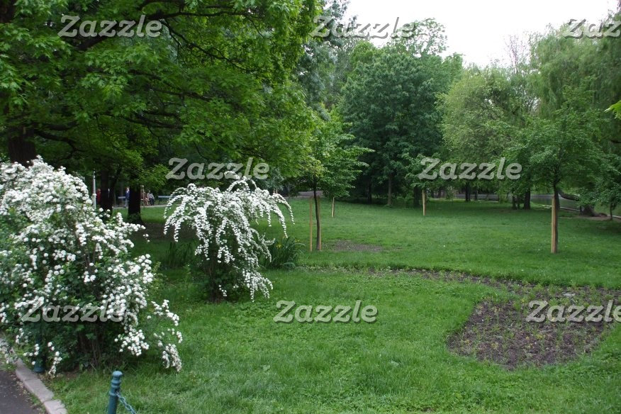 Green Bucharest