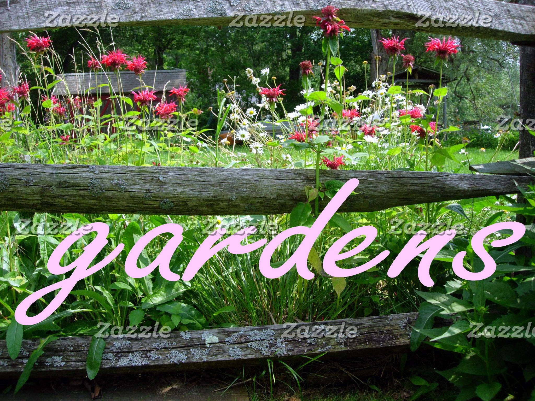 Garden Scenes