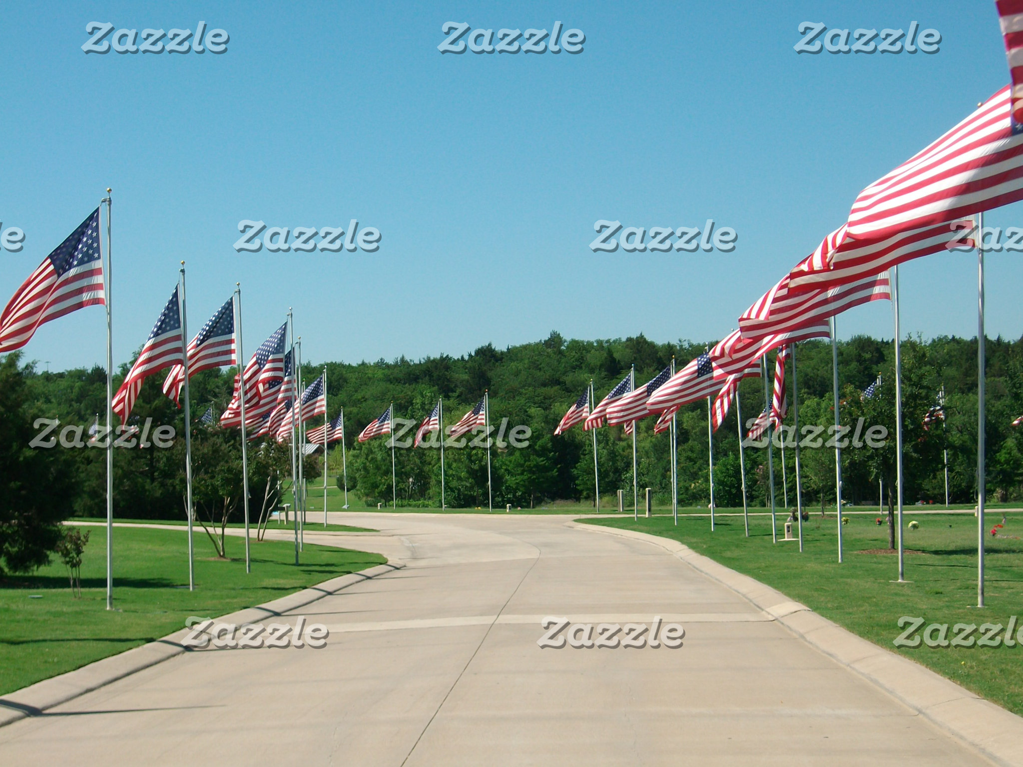 Avenue of the Flags