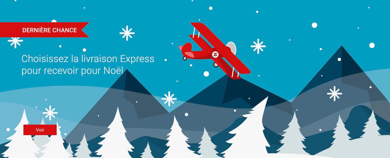 Sélectionnez la livraison Express pour recevoir pour Noël