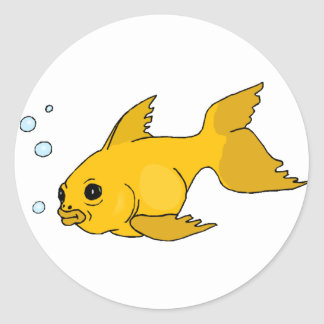 Cadeaux bocal poissons for Acheter bocal a poisson