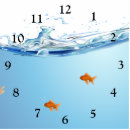 Horloge ronde poisson rouge sous l 39 aquarium de l 39 eau for Faux poisson rouge