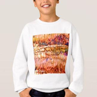 Sweatshirt Abrégé sur couches de la terre