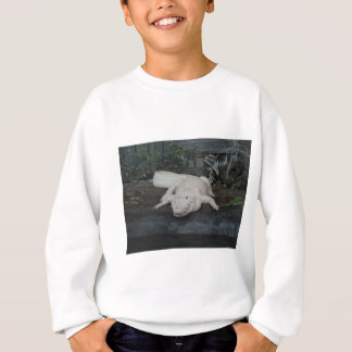 Sweatshirt alligator blanc