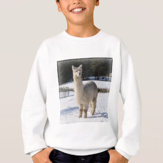 Sweatshirt Alpaga dans la neige