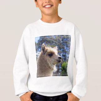 Sweatshirt Alpaga d'Emily