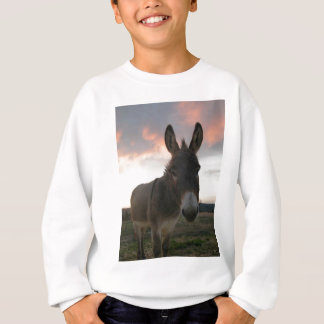 Sweatshirt Art d'âne