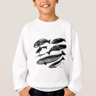 Sweatshirt baleines