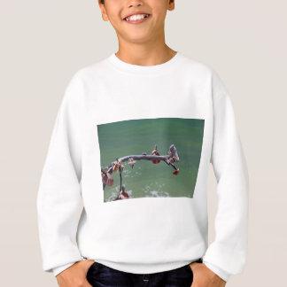 Sweatshirt Beachtime sur Boca