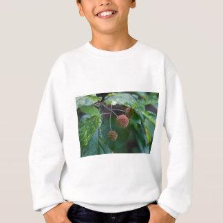 Sweatshirt Bourgeons de fleur sauvage de Bush de bouton