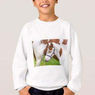 Sweatshirt Brun blanc de poulain nouveau-né avec horse.JPG