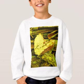 Sweatshirt c?ur d'or