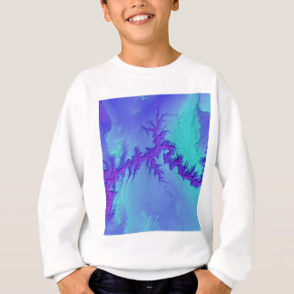 Sweatshirt Canyon grand de style lumineux de nébuleuse de
