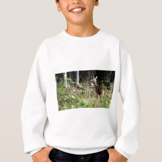 Sweatshirt Cerf de Virginie d'île de St Joseph