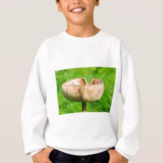Sweatshirt Champignon de Brown dans grass.JPG vert