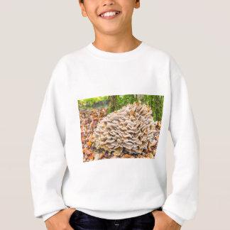 Sweatshirt Champignons de groupe avec la chute leaves.JPG