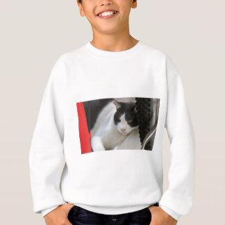 Sweatshirt Cher je, CAT !