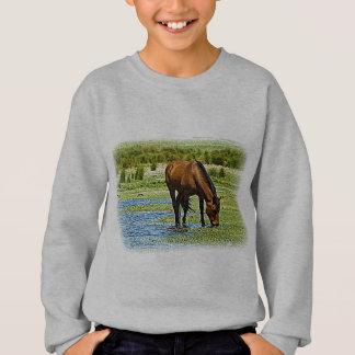 Sweatshirt Cheval de baie