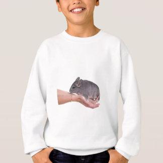 Sweatshirt chinchilla