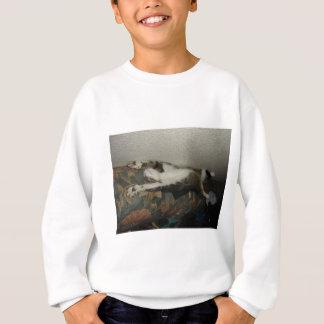 Sweatshirt Cool cat
