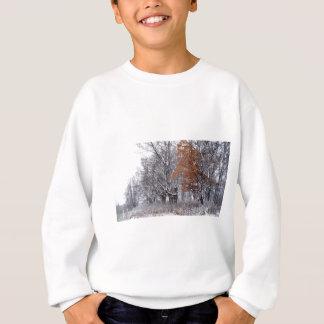 Sweatshirt Couleur dans la neige