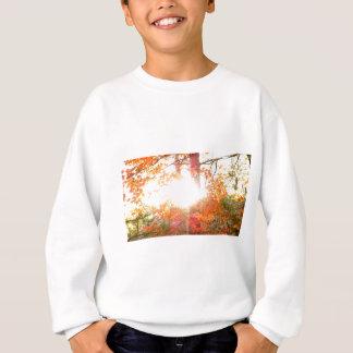 Sweatshirt Couleurs de rayon de soleil en automne sur l'île