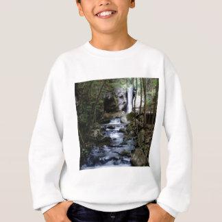 Sweatshirt courant silencieux dans la forêt