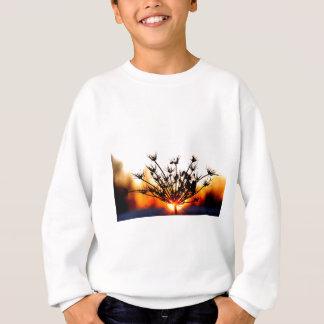 Sweatshirt Dentelle de coucher du soleil